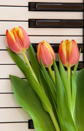 Gutscheinkarte Frühling